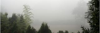 Digoin (S&L) - 234 m - 09h30 - Brouillard