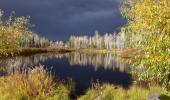 Gewitterwolken über Aspen Lake