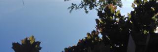 Wetter Zumholz