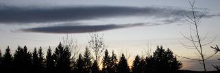 Ein milder November-tag geht zu Ende!
