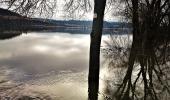 Dreikönigshochwasser 2018 an der oberen Donau, zwischen Tuttlingen und mühlheim.