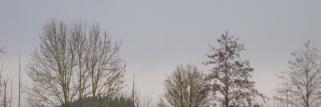 Sturm und Niederschlag!