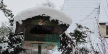 Volles Winter-Programm!