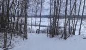 Снежный покров около 5 см