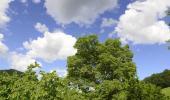 Fin de journée calme, larges éclaircies et température agréable sans vent?