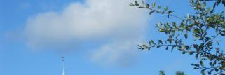 Noch vereinzelnd Quell-Wolken, sonst Sonne !