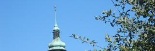 Böiger N/ NW-Wind bringt frische,kühle Luft in die Region !