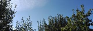 Zumholz 08:56 schönes wetter wenig wolken