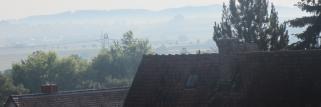 Ein frischer feuchter Morgen !