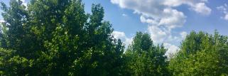 heiter bis wolkig in Dachau