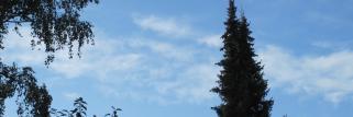 Top_Spätsommer,Früh-Temperatur wieder im 2 stelligen Bereich !