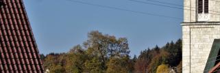 heubergwetter(sw-alb): endlos herbst - der goldene oktober geht weiter!
