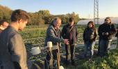 Professionelle Erdbeerplantage mit Wetter-Messstation