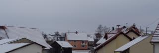heubergwetter(sw-alb): kalte nacht, grauer morgen - die kälte hat uns im griff.