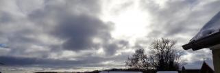 heubergwetter(sw-alb): kalte nacht, kalter morgen, eisiger o-wind, bedeckt .