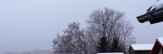 heubergwetter(sw-alb): kalte nacht, nebel, bedeckt und leichtes geflöckel.