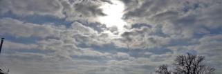 heubergwetter (sw-alb): ruhige, kühle nacht, grauer morgen, jetzt trübe sonne.