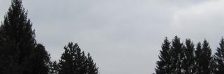 Grau und frostfrei !